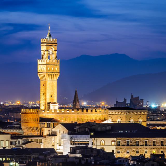 """Palazzo Vecchio, Florence"" stock image"