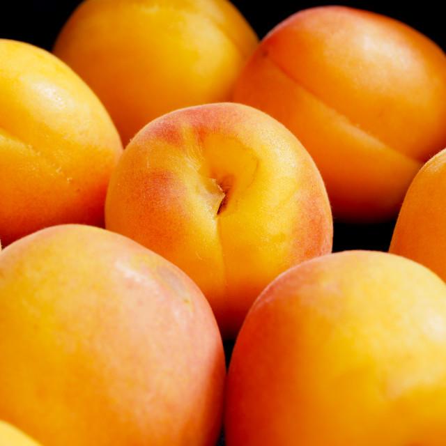 """Apricot"" stock image"