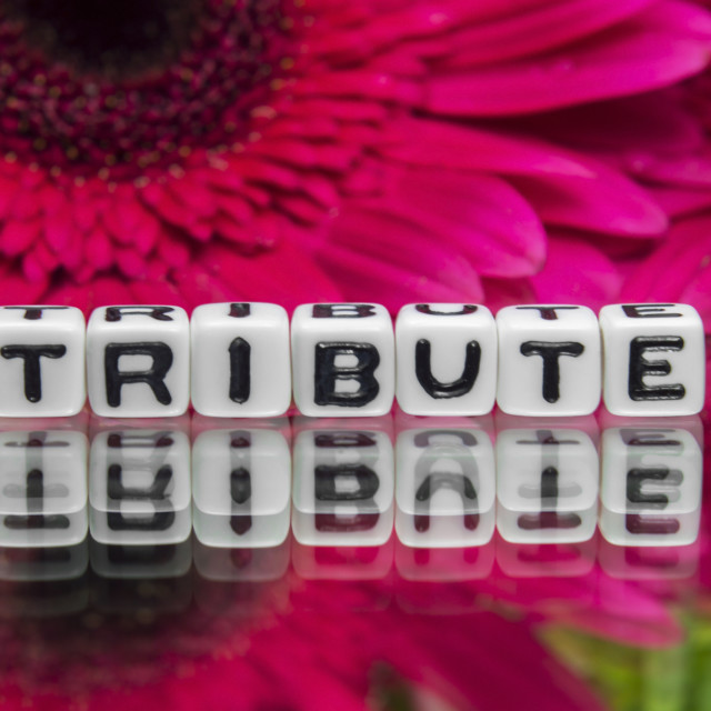 """""""Tribute text with red flowers"""" stock image"""