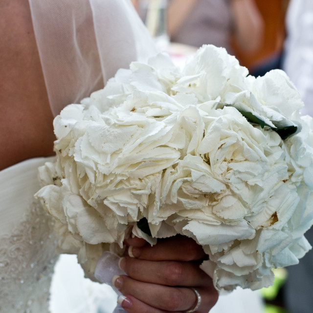 """Wedding bouquet"" stock image"