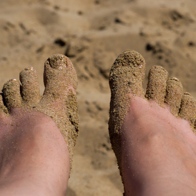 """Sandy Toes"" stock image"