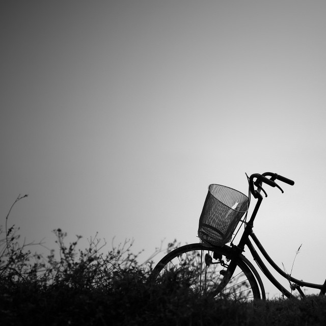 """""""A bicycle"""" stock image"""