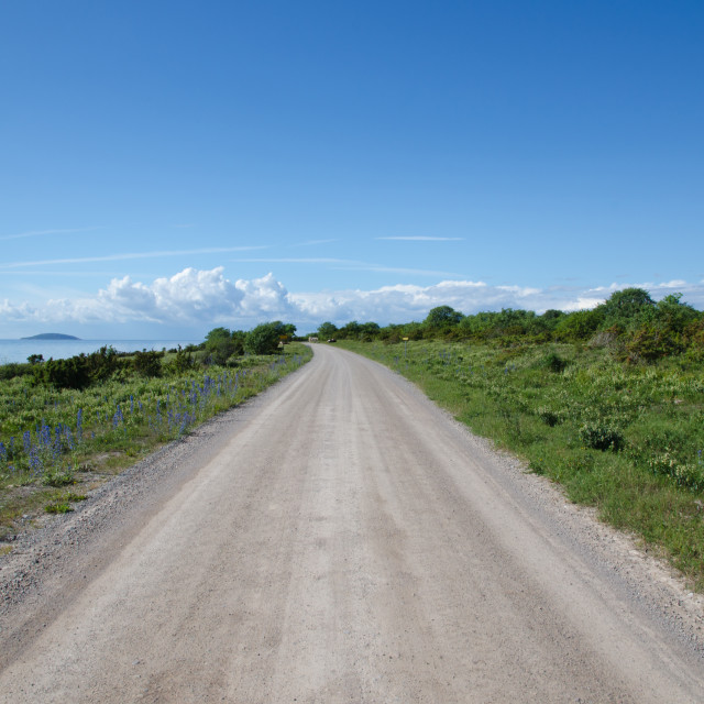 """Coastal gravel road"" stock image"