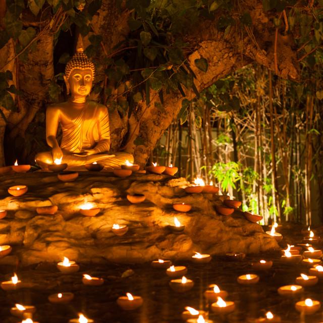 """""""Buddah illumination"""" stock image"""
