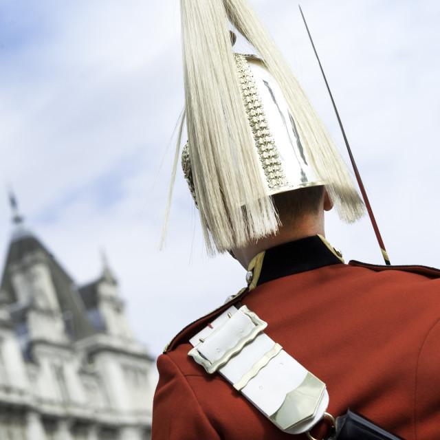 """Guardsman"" stock image"