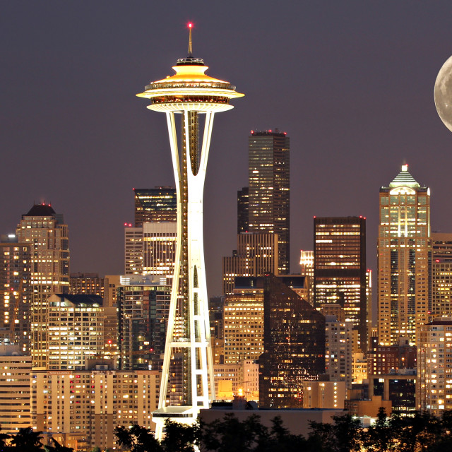 """Seattle Moonlight"" stock image"