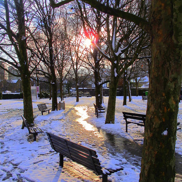 """Winter Bench"" stock image"
