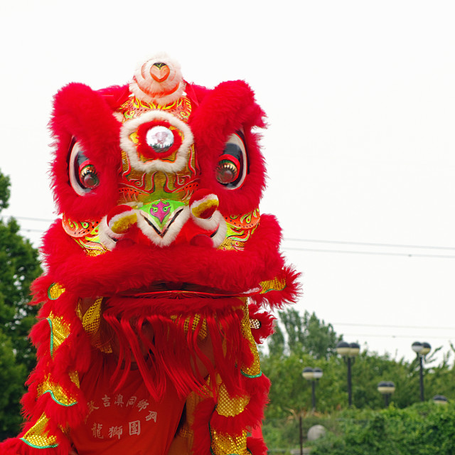 """Chinese Dancing Lion"" stock image"