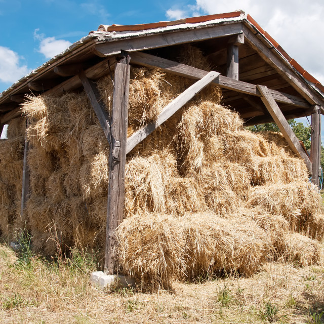 """Wooden barn"" stock image"