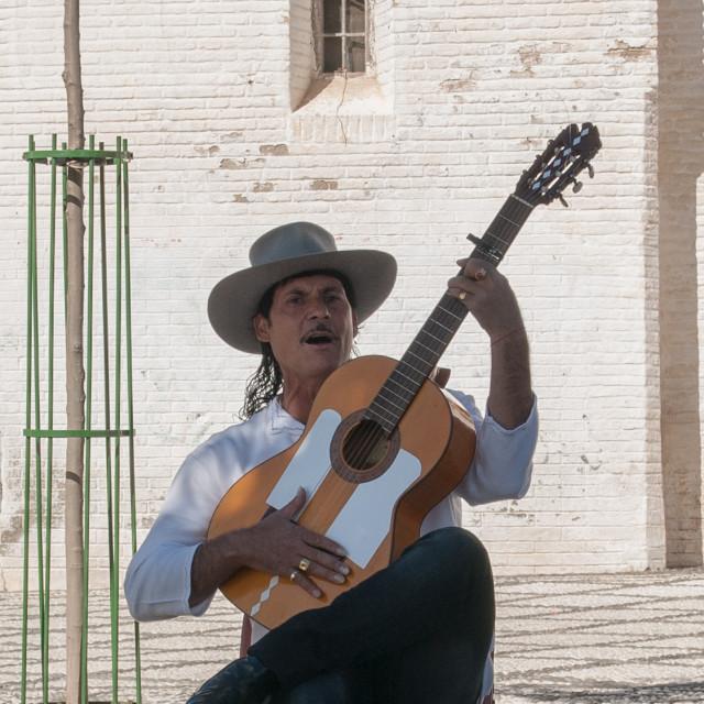 """Flamenco guitar player - 2"" stock image"