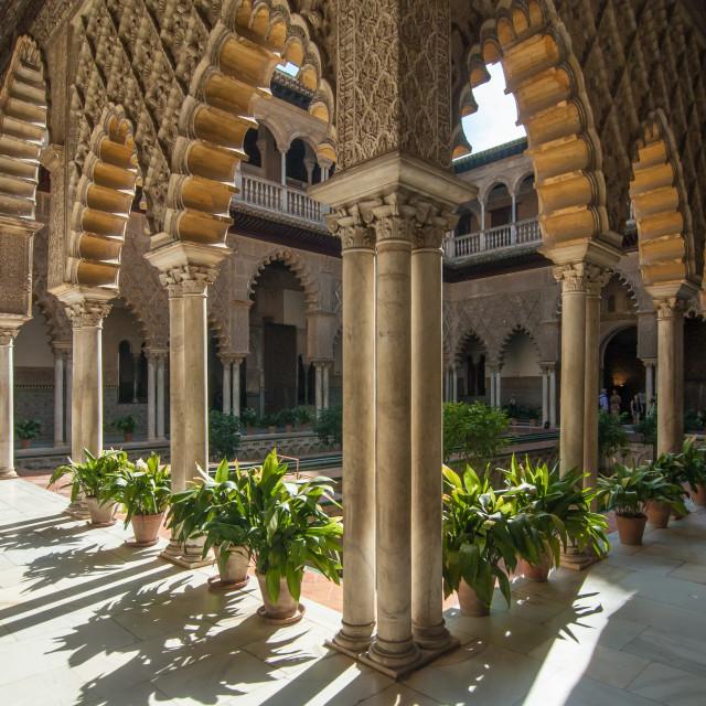 """Alcazar palace courtyard"" stock image"