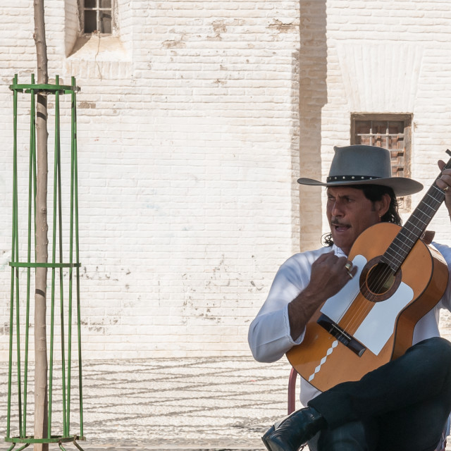 """Flamenco player - 1"" stock image"