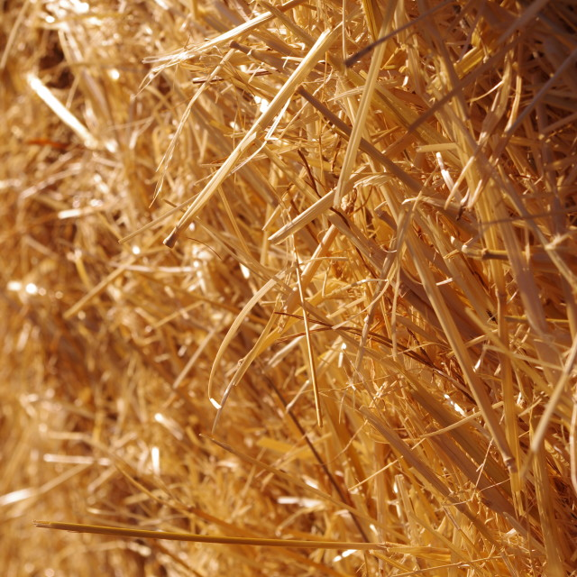 """Straw bale"" stock image"