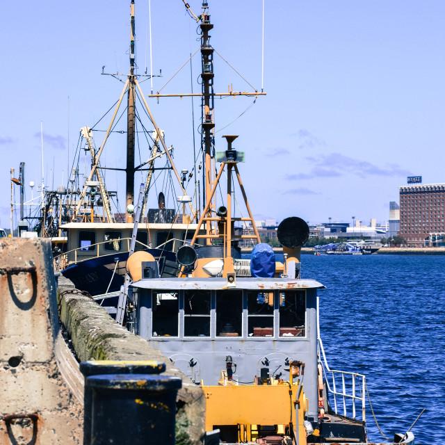 """""""Boston fishing dock"""" stock image"""