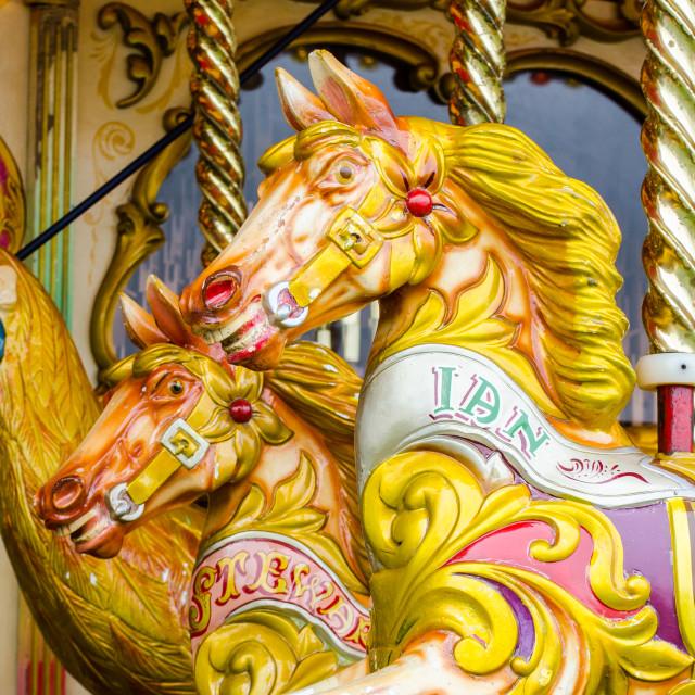 """Fairground Horses"" stock image"
