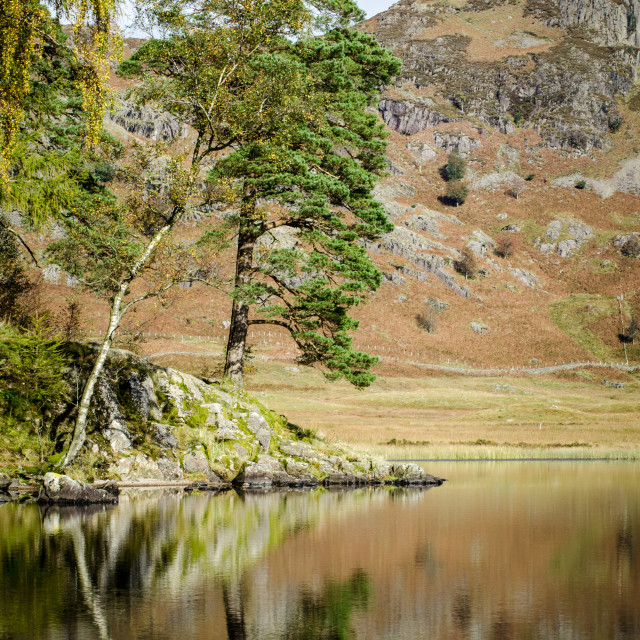 """Blea Tarn, Cumbria - 4"" stock image"