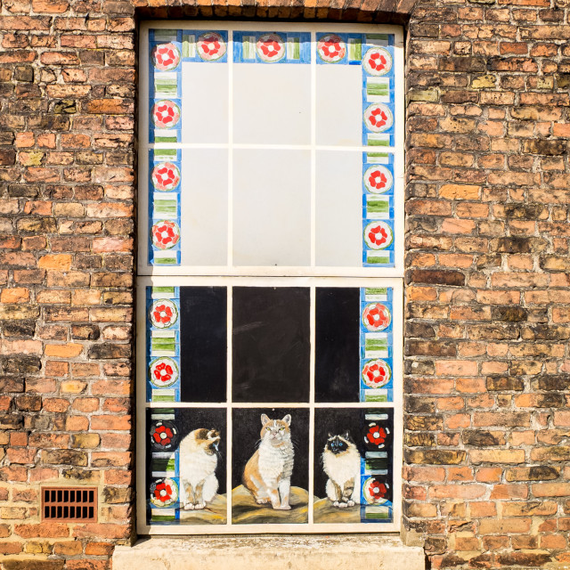 """""""Cats in the window"""" stock image"""