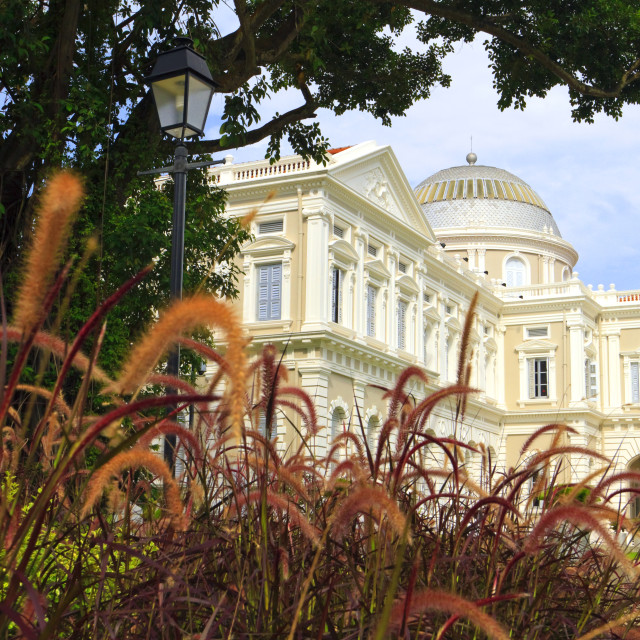 """National Museum of Singapore and gardens"" stock image"