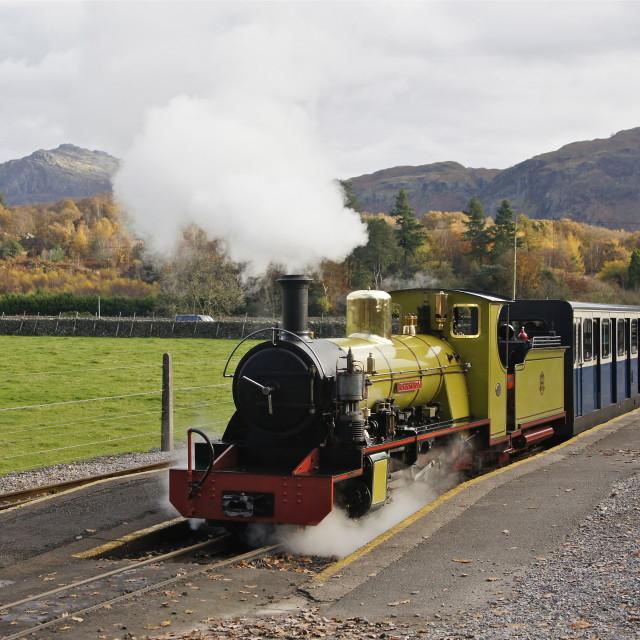 """Northern Rock Narrow Gauge Steam loco, Cumbria"" stock image"