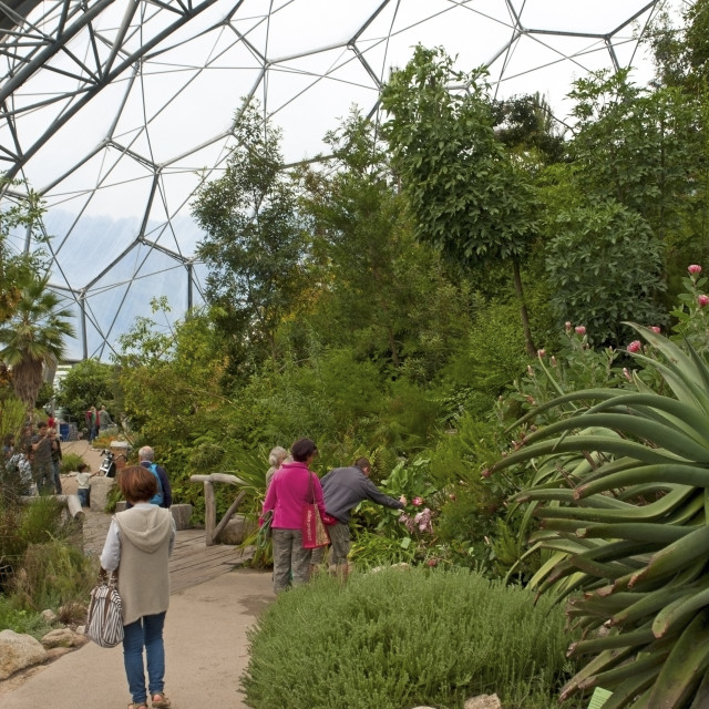 """Eden project, Cornwall"" stock image"