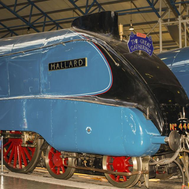 """Mallard Steam Train"" stock image"