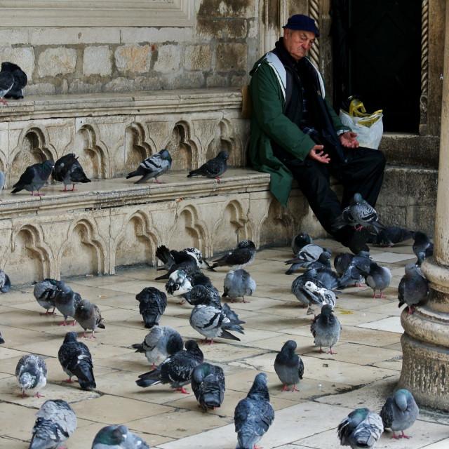 """Bird Man, Dubrovnik"" stock image"