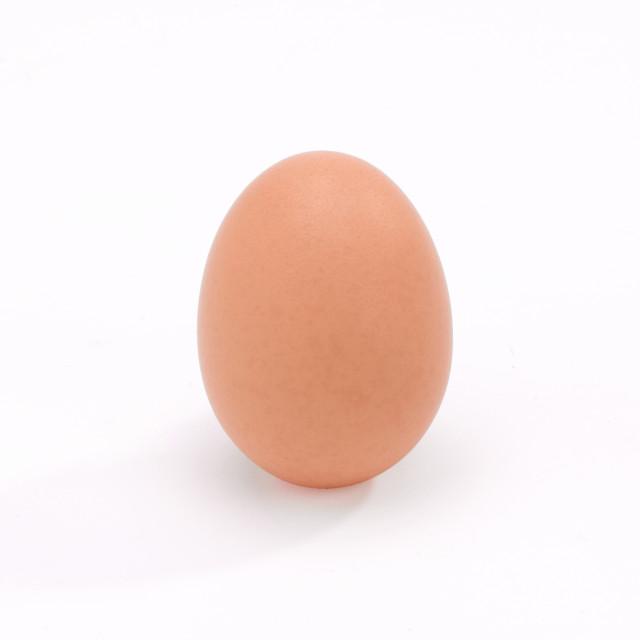 """Egg"" stock image"