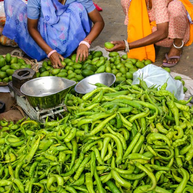 """""""Market, Jaipur, Rajasthan, India"""" stock image"""