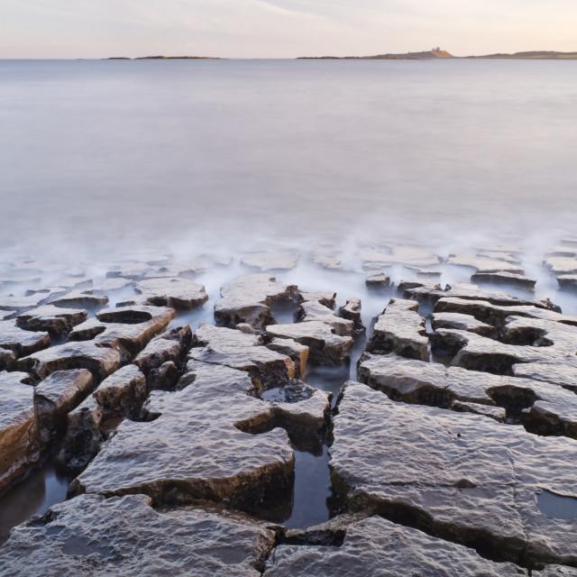 """Looking towards Dunstanburgh"" stock image"