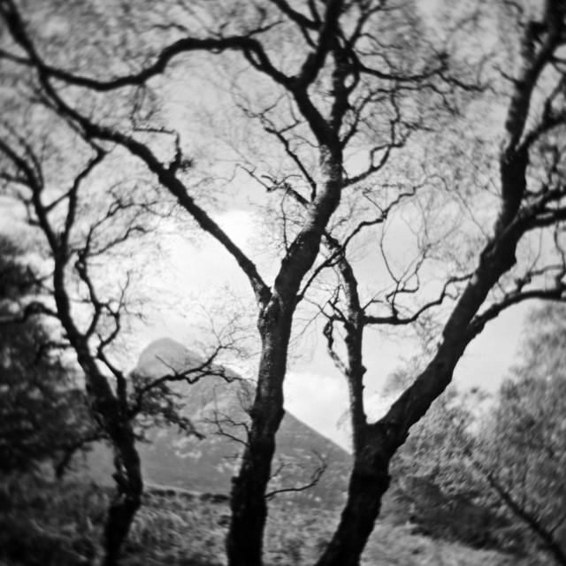 """Swirly Arran Landscape"" stock image"