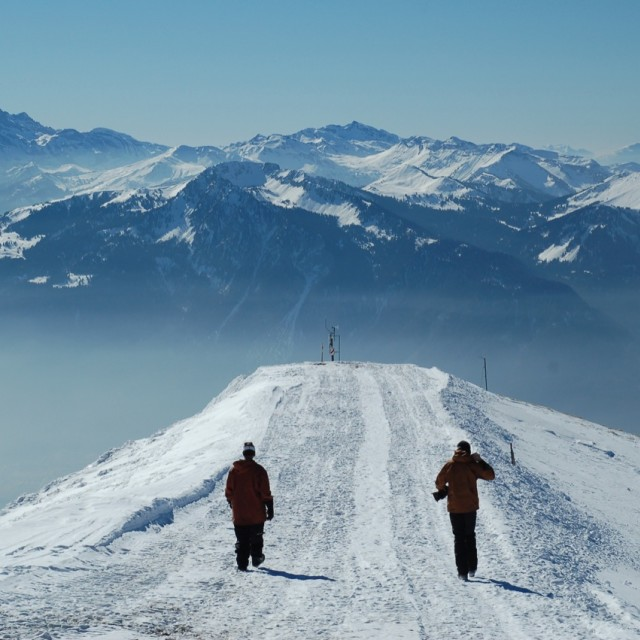 """""""Off Piste in The Alps"""" stock image"""