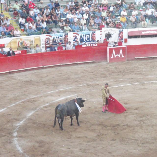 """""""Bullfight in Guadalajara"""" stock image"""