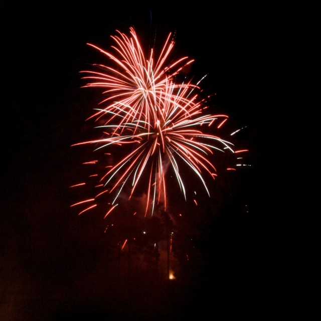 """Rose Fireworks"" stock image"