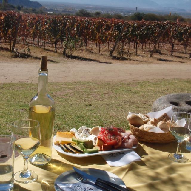 """Wine tasting in Cafayete"" stock image"