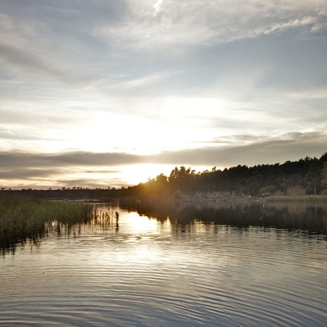"""Frensham Little Pond"" stock image"