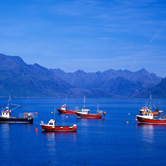 """""""Isle of Skye"""" stock image"""