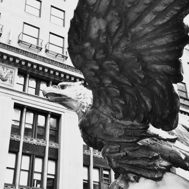 """Eagle on Grand Central"" stock image"
