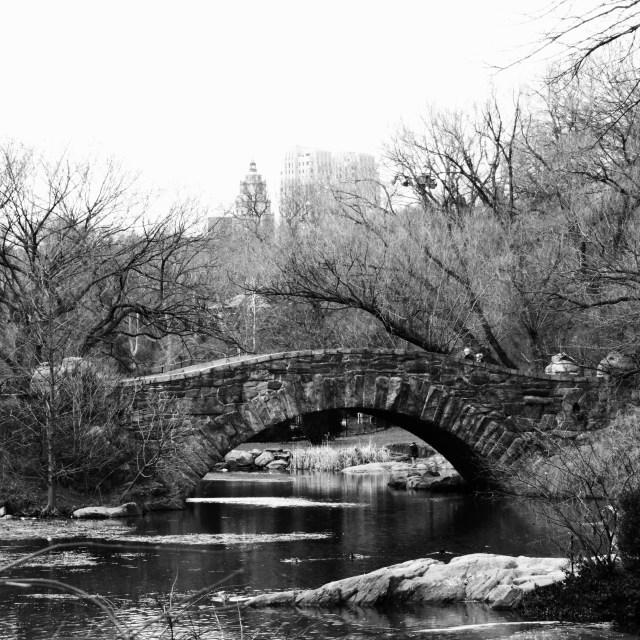 """Gapstow Bridge"" stock image"