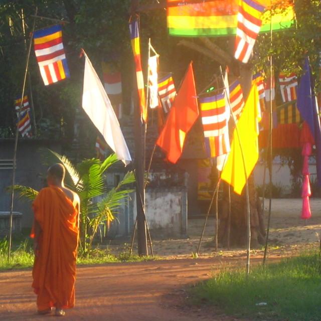 """""""Monk at sundown"""" stock image"""