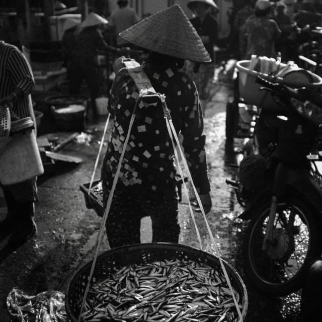 """The fish-market A01"" stock image"