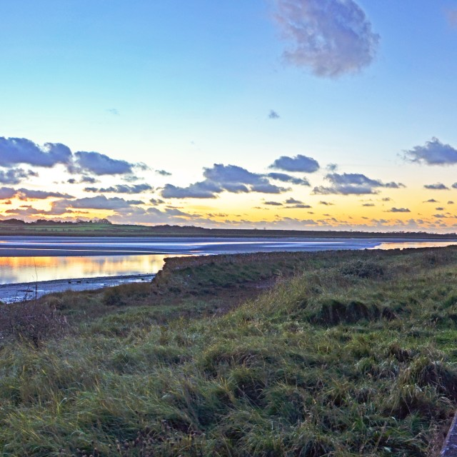 """Puddle Trail Panorama"" stock image"