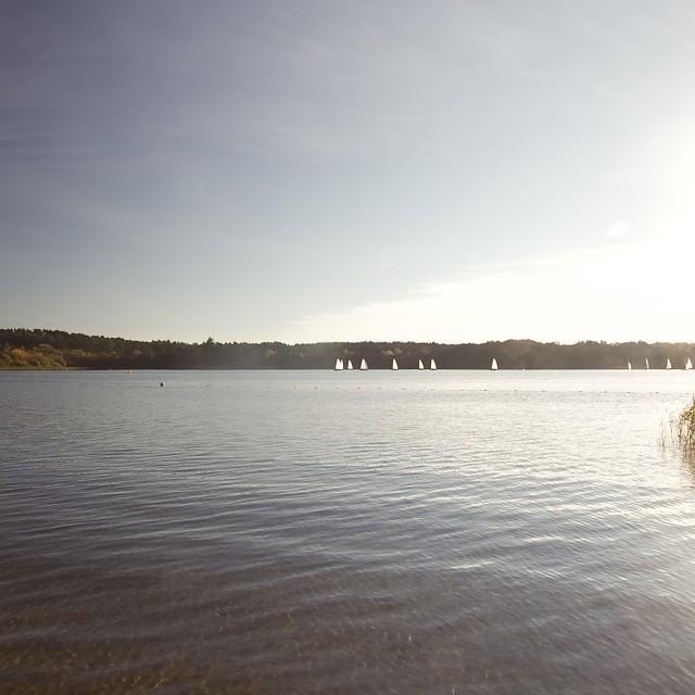 """Sailing boats on the Frensham Great Pond"" stock image"