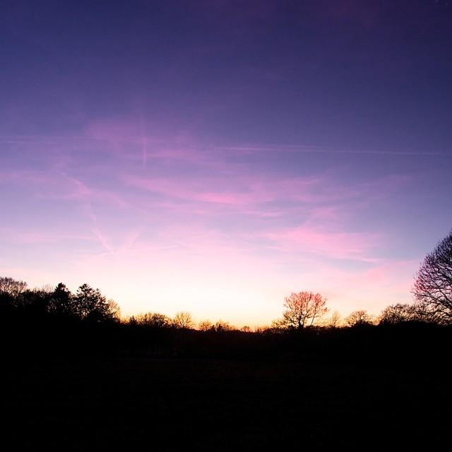 """Purple sunset"" stock image"