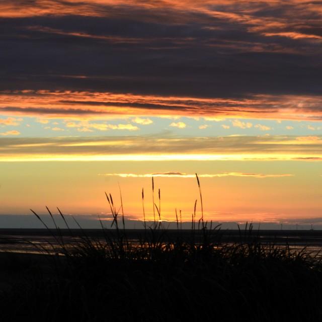 """Paint palette sunset"" stock image"