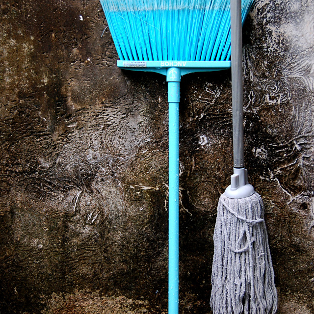 """Floor Mop and bloom"" stock image"