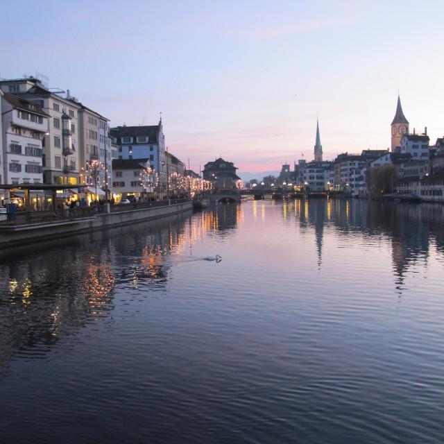 """""""Swanning around in Zurich"""" stock image"""