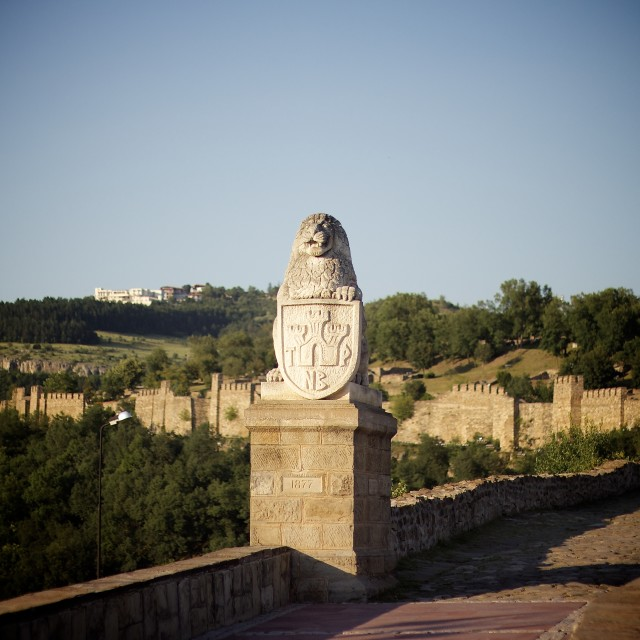 """""""Lion of Tsarevets Fortress"""" stock image"""