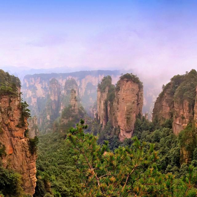 """Zhangjiajie National Forest Park, China"" stock image"
