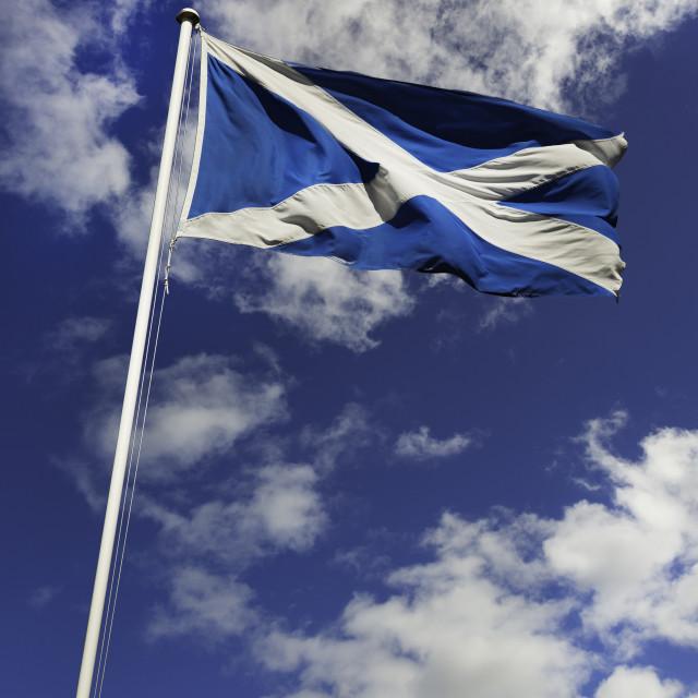 """""""Scottish Flag"""" stock image"""