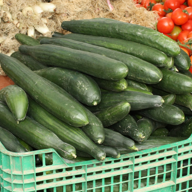 """Cucumbers"" stock image"